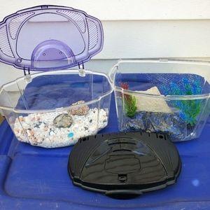 Betta Fish Bowls purple black lids
